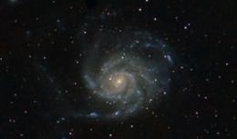 Spring galaxies