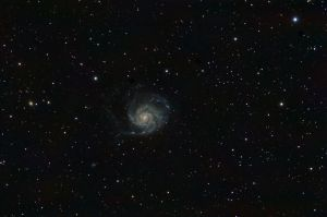 M101 Nikon D90 on Altair Wave 115/805 (f/7), ISO 400 90 minutes: 9 frames of 10 minutes each.